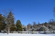 White Snow Blue Skies (10)