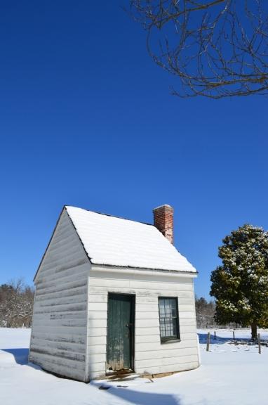 White Snow Blue Skies (2)
