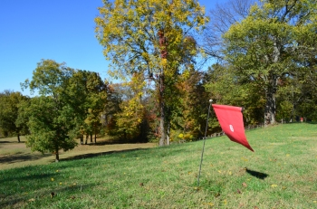 A flag marking one stop on the self-guided iPad tour of the Ferry Farm grounds.