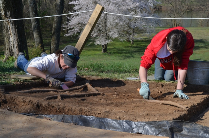 Dig Site Opens (15)