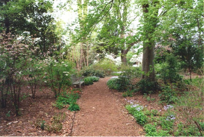 Kenmore's Gardens 10