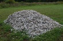 The oyster shells that will be burned.