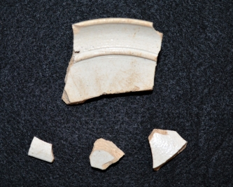 Fragments of the patch stand excavated at Ferry Farm.