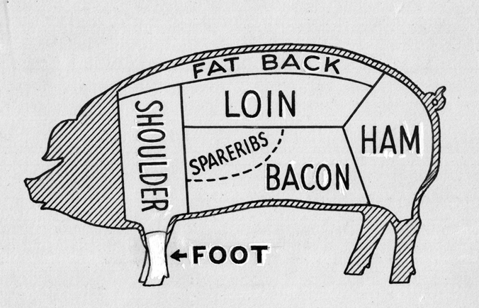 Butcher Diagram for Pig