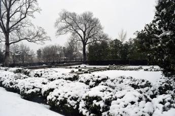 Kenmore's gardens.