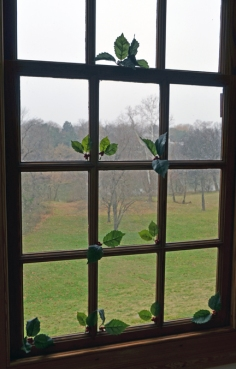 Sprigged window in the Washington house 2