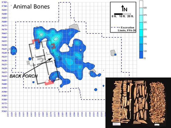 Animal Bone Concentration behind Washington House
