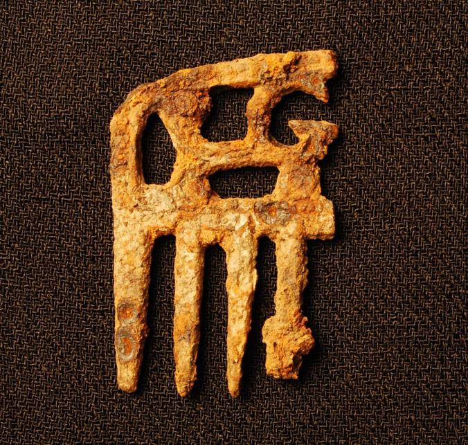 Mane comb excavated at Ff